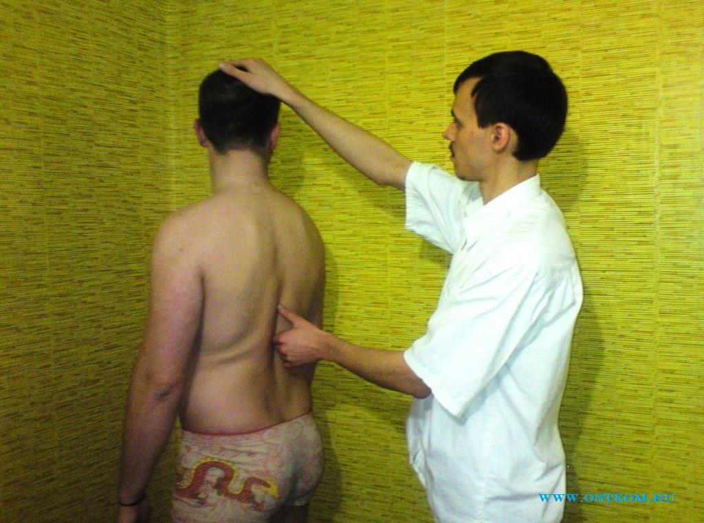 тест по анатомии: